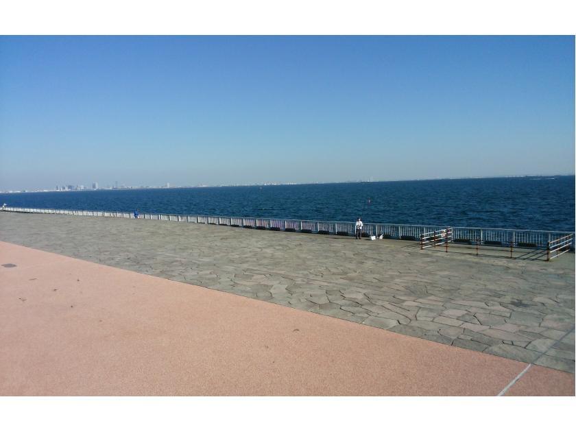 高洲 海浜 公園 釣り